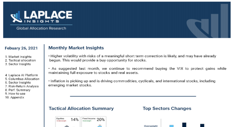 Zoomed In Image of Investment Report from Laplace Insights